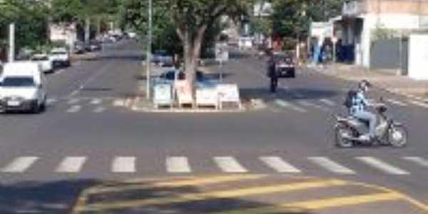 Avenida Presidente Castelo Branco, Por Moacir Nunes