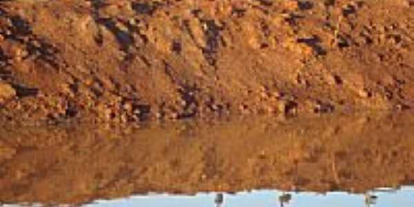 Marrecos na lagoa por Algacir