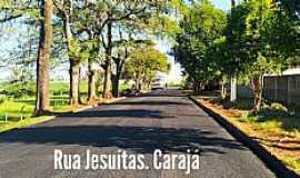 Jesuítas - Imagens da cidade de Jesuítas - PR
