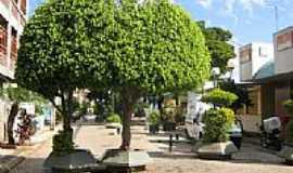 Mandaguaçu - Calçadão-Foto:luizvolpato