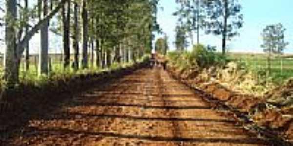 Estrada rural em Maravilha-Foto:PROG. ECOMETRÓPOLE