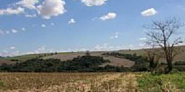 Área rural - Marilândia do Sul-Foto:cesarlond