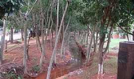 Marilena - Marilena-PR-Córrego no Parque Iracema-Foto:lindo42