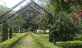 Marilena - Marilena-PR-Entrada do Parque Iracema-Foto:lindo42