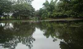 Marilena - Marilena-PR-Lago do Parque Iracema-Foto:lindo42