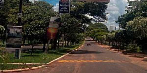 Marilena-PR-Entrada da cidade-Foto:Airton Nicolau Furtado