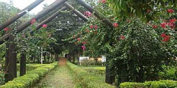 Marilena-PR-Entrada do Parque Iracema-Foto:lindo42