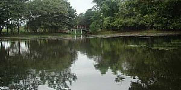 Marilena-PR-Lago do Parque Iracema-Foto:lindo42