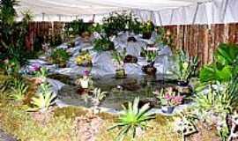 Marip� - Festa da Orquidea