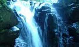 Mato Rico - Cachoeira Juquiri