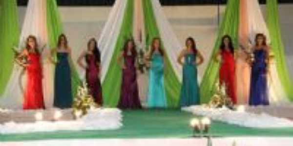 Miss Missal 2010, Por tathy