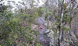 Ibirapitanga - Trilha no alto da Serra Pelada em Ibirapitanga-BA-Foto:Beto Santana