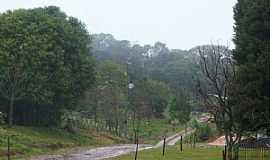 Palmital - Palmital-PR-Estrada rural-Foto:Loivinho França