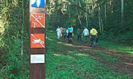 Palotina - Trilha Reserva Biol�gica