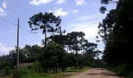 Paulo Frontin - Estrada rural-Foto:Artemio C.Karpinski