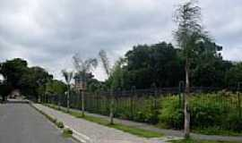 Pinhais - Bosque Municipal-Foto:idi_ctba