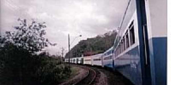 Composição de passageiros-Foto:ROBERTO CORDEIROPr