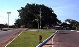 Pitangueiras - Pitangueiras  foto  por leandro renato ferreira