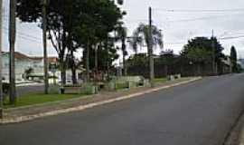 Ponta Grossa - Pracinha entre as ruas Silva Jardim e Paula Xavier  em Ponta Grossa-Foto:Rafael Klimek