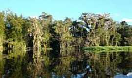 Pontal do Paraná - Rio Guaraguaçu-Foto:Marli T.A. Wrobel
