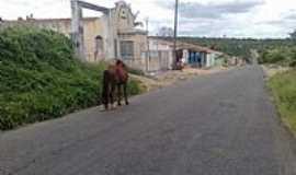 Igará - Entrada da cidade de Igará-Foto:namiranoticias.