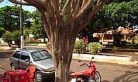 Rancho Alegre - Praça-Foto:johnnybhz