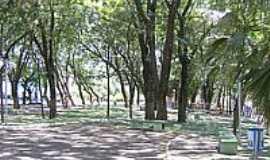 Realeza - Bosque em Realeza-Foto:[ AERO ]JEloy Al Ma…