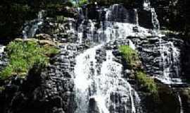 Reserva do Iguaçu - Imagem