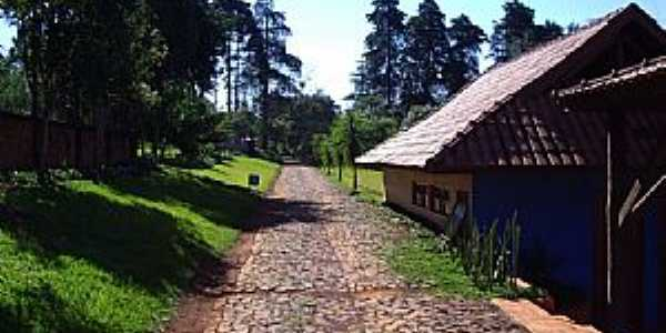Roncador-PR-Parque Gabirobas-Foto:Claudenir Lourençato