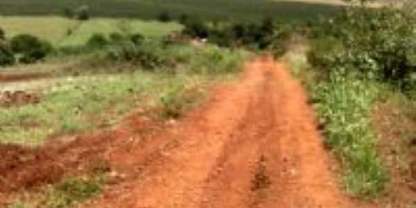Sítio São José-Santa Amélia-PR, Por claudio garbuyo