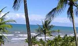 Ilh�us - Vista da praia entre coqueiros em Ilh�us-BA-Foto:Beatriz Barreto Tane�