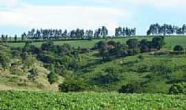 Santo Antônio do Palmital - Vista  da Fazenda Josana em Santo Antônio do Palmital-Foto:pellegrini32