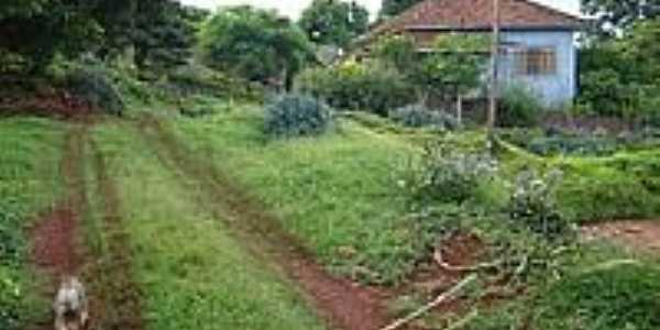 Casa na Fazenda Josana em Santo Antônio do Palmital-Foto:pellegrini32