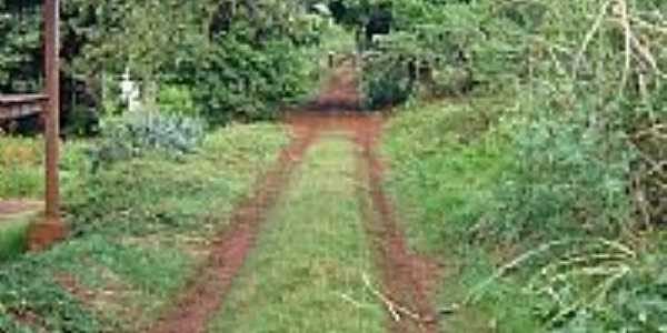 Entrada da Fazenda Josana em Santo Antônio do Palmital-Foto:pellegrini32