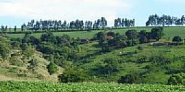 Vista  da Fazenda Josana em Santo Antônio do Palmital-Foto:pellegrini32
