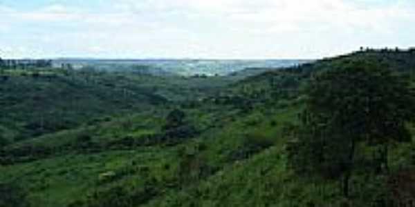Vista  da região de Santo Antônio do Palmital-Foto:pellegrini32