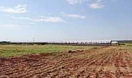 São José do Itavo - São José do Itavo-PR-Novas instalações da UPL para produção de leitões-Foto:itaipulandia.pr.gov.br