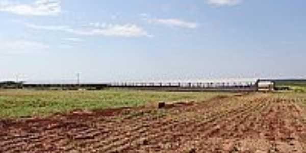 São José do Itavo-PR-Novas instalações da UPL para produção de leitões-Foto:itaipulandia.pr.gov.br