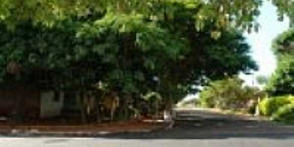São José do Itavo-PR-Ruas arborizadas-Foto:itaipulandia.pr.gov.br