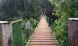 S�o Pedro do Igua�u - Ponte P�nsil na Reserva Florestal Cabe�a de Cachorro em S�o Pedro do Igua�u-PR-Foto:Artemio C.Karpinski