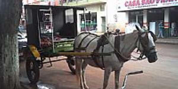 São Pedro do Ivaí-PR-Um dos transportes usados na cidade-Foto:cleucia_marcos