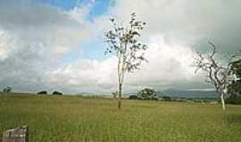 Ipir� - Sert�o da Bahia - foto Ant�nio L. de Souza