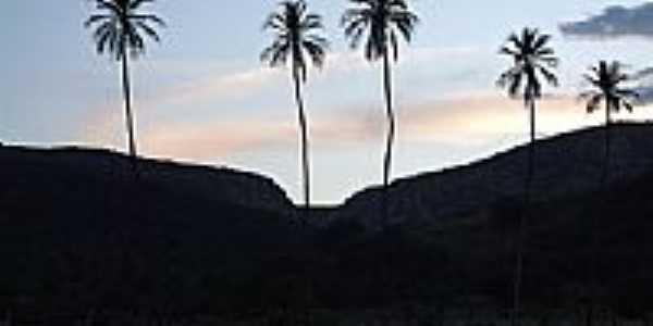 Entardecer em Ipucaba-Foto:rsound