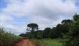 Sede Progresso - Estrada de terra-Foto:Aparecido Lopes Dini…