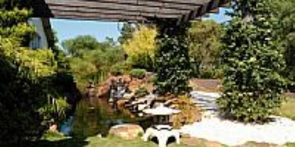 Lago ornamental Picasaweb