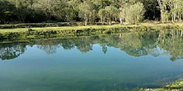 Teixeira Soares-PR-Lindo lago-Foto:thecities.com.br