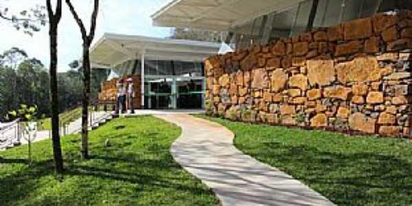 Teixeira Soares-PR-Parque Natural Municipal Mata do Rio Uruguai-Foto:comunidadeviadutos.com.br