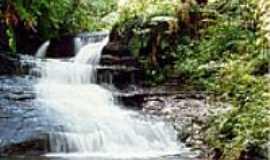 Telêmaco Borba - Imagem do Parque Ecológico