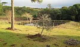 Timbu Velho - Área rural de Timbu Velho-Foto:Catossi