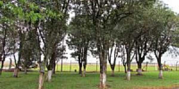 Campo de Futebol no Clube Real em Três Bocas-Foto:Ricardo Mercadante